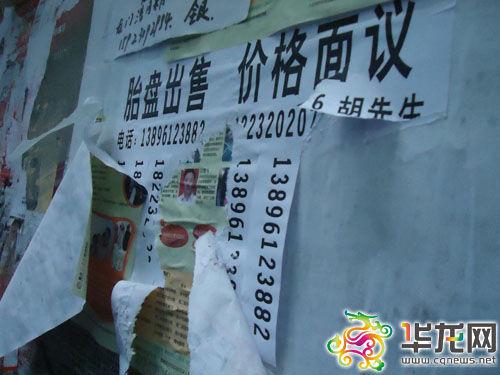 南岸区上新街到港口医院附近的街道宣传栏上,贴有许多贩卖胎盘的小广告。华龙网记者 摄