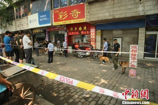 民警正带着警犬在现场附近搜索嫌疑人线索