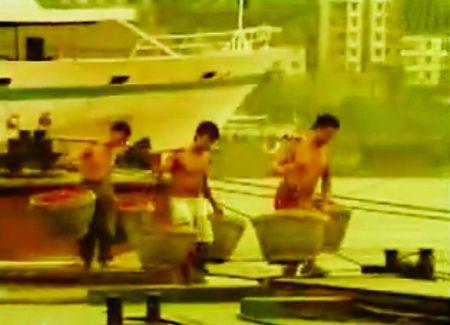 力哥挑着红辣椒走上码头