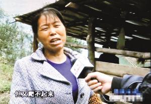 山羊被恶狗咬死,陈洪的妻子很伤心