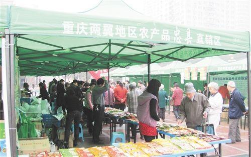 组织15家企业农产品龙头企业登录商务部新农村商网