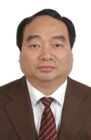 中共北碚区委书记雷政富(图片来源:阳光重庆)