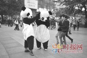 """杨家坪,""""熊猫人""""在街头与市民互动嬉戏"""