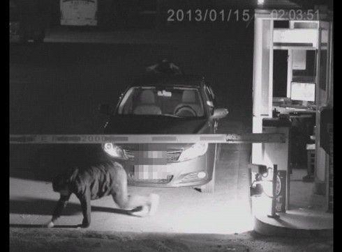 """深夜无人驾驶车辆车顶惊现""""女鬼"""",吓傻收费员"""