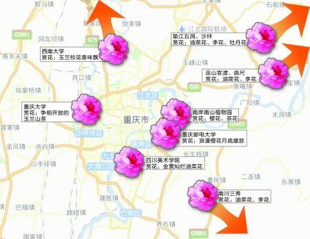四川美院手绘地图