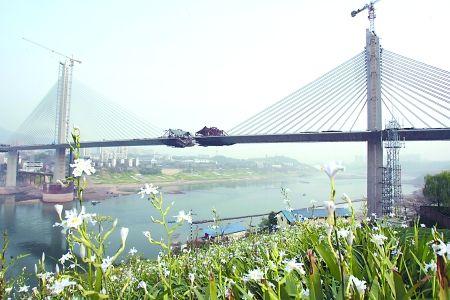 昨日,即将合龙的双碑嘉陵江大桥。 记者 邹飞 实习生 蒋兴宇 摄