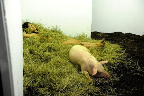 美女与猪裸睡