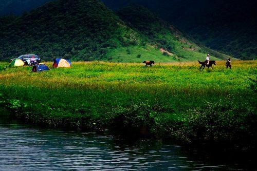 重庆巫溪红池坝国家森林公园
