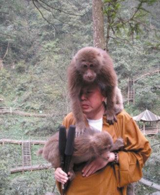 峨眉山顽猴
