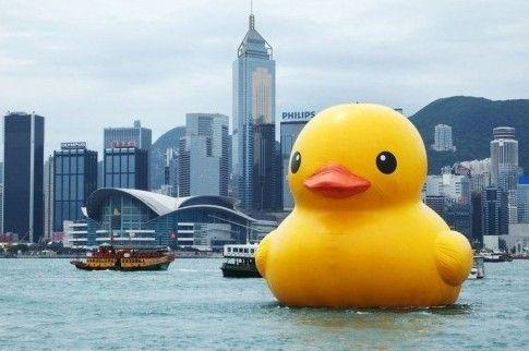 大黄鸭在维港
