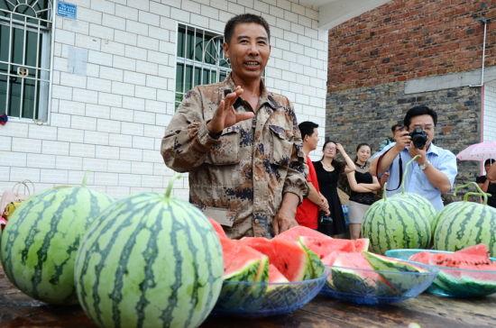"""垫江""""西瓜大王""""黄国林向记者们介绍他种植的西瓜"""
