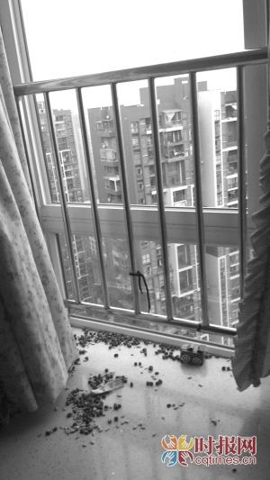 还没满两岁的豆豆翻过卧室里飘窗的护栏,不幸从31楼坠下