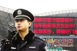 重庆市公安局高新分局整合并入重庆市公安局九龙坡区分局