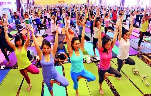 昨日,500多名来自全国各地的瑜伽爱好者聚会,同练瑜伽,切磋技艺。