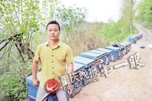 34岁的佘平将28箱蜜蜂运上山打造蜂衣