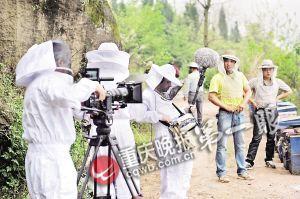 3个法国摄影师穿着防蜂服进行全程跟拍