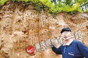 蒋晓5天前发现这块土崖壁布满洞穴,洞外的天空上盘旋着成群结队的燕子。