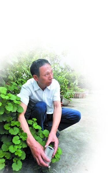 昨日,石桥铺渝州新城,曾先生在露台上调试摄像头。