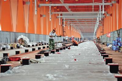 昨日,六号线的轨道开始在千厮门大桥上进行铺装施工。