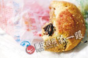 飞蛾嵌在月饼里,半边翅膀已被吃进肚子
