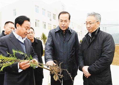 12月14日,市委书记孙政才在奉节县移民生态园调研,了解生态经济特色产业带发展情况。