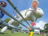 超萌兔子跨栏比赛