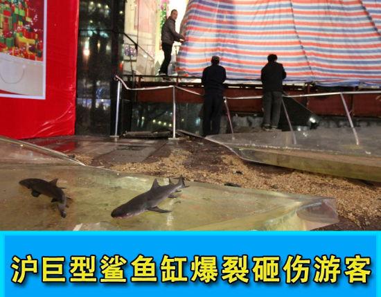 上海鲨鱼缸爆裂