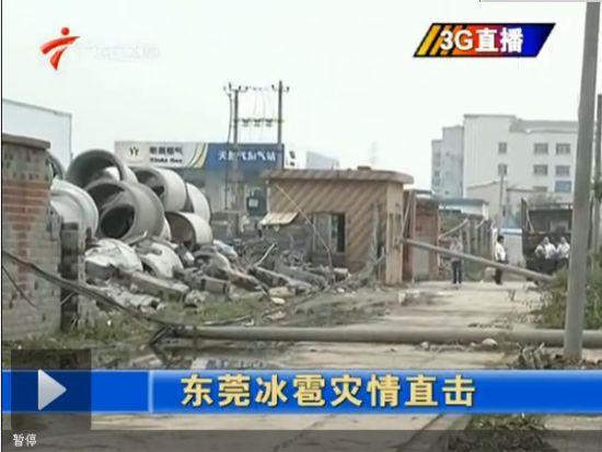视频:东莞冰雹灾情直击
