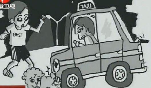 视频:爱犬被撞死 主人要司机披麻戴孝