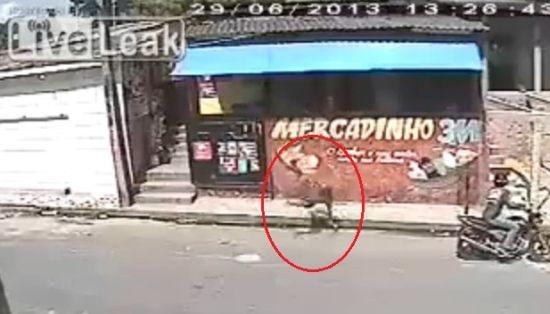视频:劫匪入室抢劫被扔出窗外