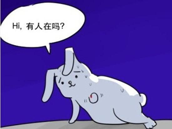 网友排队叫玉兔起床