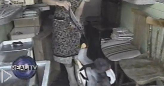 视频:成精了!企鹅背着背包自行购鱼