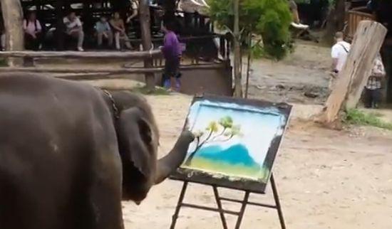 实拍大象鼻子作画