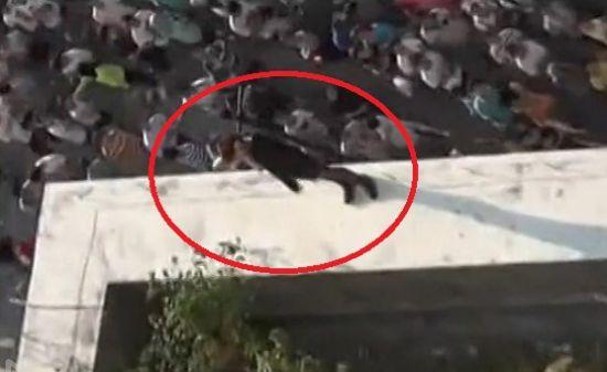 实拍警察智救跳楼女 趁其不备飞身救人