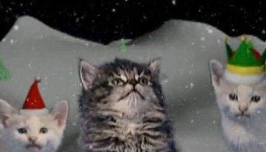 视频:叮当猫圣诞献歌卖萌