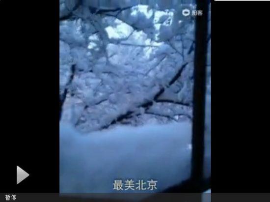 视频:实拍北京降下大雪 厚约10厘米