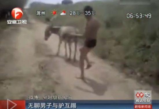 视频:实拍无聊男子与驴互踢切磋武艺