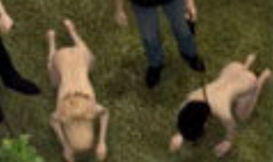视频:三名女子遭性囚10年脱困 露面致谢