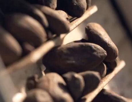 巧克力控必看! 工匠制作巧克力全过程